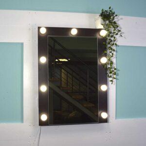 ПЕТРА 60x80 Гримерное зеркало на стену цвет венге_0003_DSC_0766